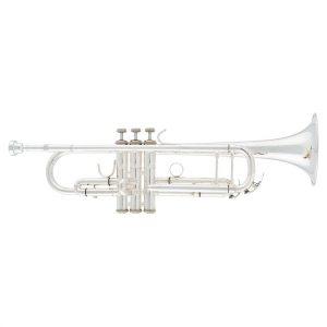 Arnolds Terra 8837S Bb Trumpet