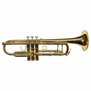 Arnolds Terra 8843 Trumpet