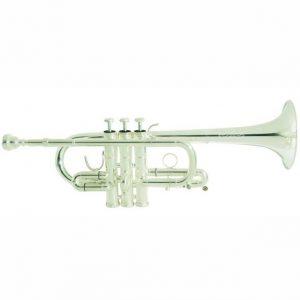 Arnolds Terra Eb D Trumpet