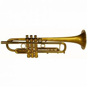 Bach Taylor Hybrid Trumpet 3