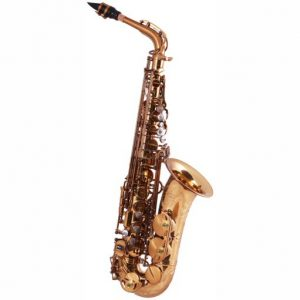 System 54 R Series Dragon Alto Sax