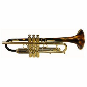 Taylor VR Custom Trumpet